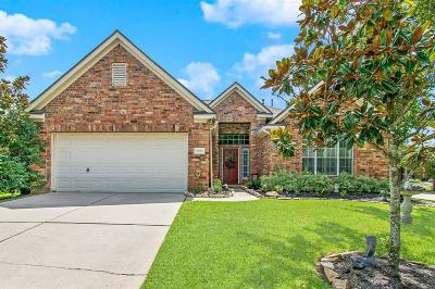 Tomball Single Family Home For Sale: 11731 Canyon Drop Drive
