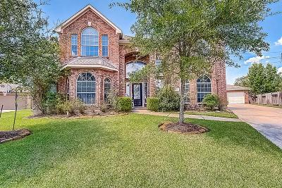 Tomball Single Family Home For Sale: 11518 Kingsbarn Court