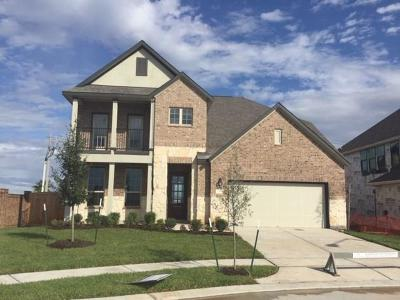 Texas City Single Family Home For Sale: 3214 Red Pebble Lane