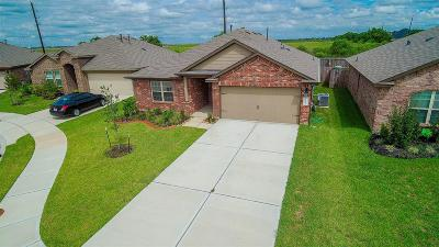 Katy Single Family Home For Sale: 29342 Dunns Creek Court