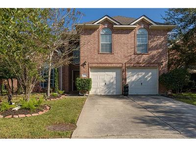 Tomball Single Family Home For Sale: 18910 Sun Pass Drive