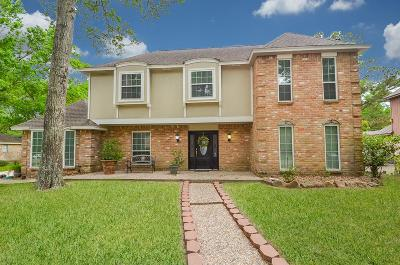Houston Single Family Home For Sale: 3515 Village Oaks Drive