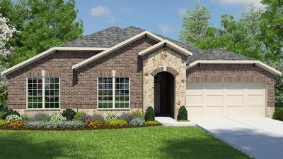 Tomball Single Family Home For Sale: 12526 Fort Isabella Drive