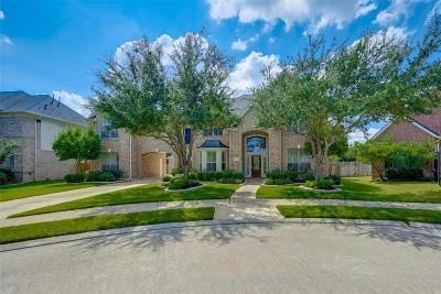 Katy Single Family Home For Sale: 7419 Alder Springs Lane
