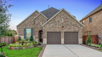 Sugar Land Single Family Home For Sale: 5002 Anthony Springs Lane