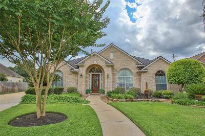 Houston Single Family Home For Sale: 9915 Willowbridge Park Boulevard