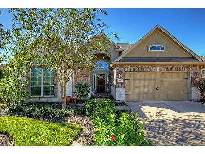The Woodlands Single Family Home For Sale: 22 S Pinto Point Circle