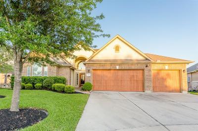 Tomball Single Family Home For Sale: 17606 Kathywood Drive