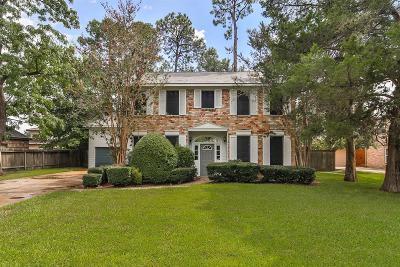 Houston Single Family Home For Sale: 507 Rowlock Lane