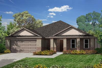Pearland Single Family Home For Sale: 3908 Littlebourne Lane