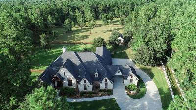 Magnolia Single Family Home For Sale: 36968 Post Oak Circle