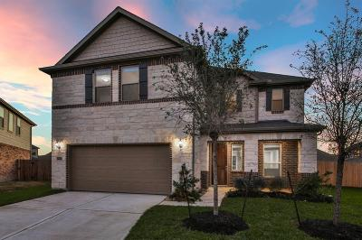 Pearland Single Family Home For Sale: 14112 Wedgewood Lakes Court