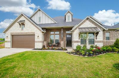Katy Single Family Home For Sale: 29410 Amber Meadow Court
