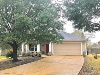 Tomball Single Family Home For Sale: 12814 Magnolia Arbor Court