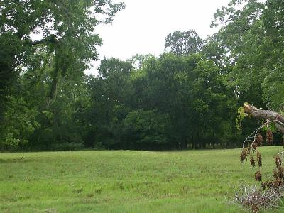 Fulshear Residential Lots & Land For Sale: 30919 Lower Oxbow Trace