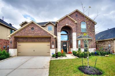 Missouri City Single Family Home For Sale: 3707 Pantano Court