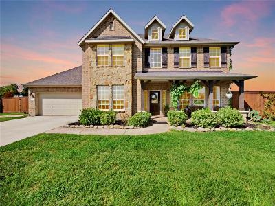 Baytown Single Family Home For Sale: 6203 Sundown Lane