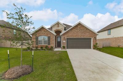 Rosenberg Single Family Home For Sale: 8923 Japonica Drive