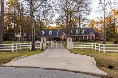 New Caney Single Family Home For Sale: 21951 Hardwood Trail