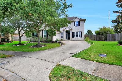Pearland Single Family Home For Sale: 11903 Auburn Trail Lane
