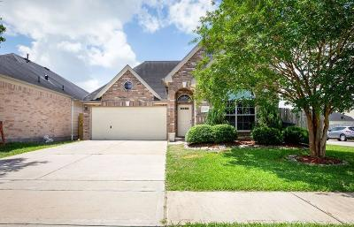 Houston Single Family Home For Sale: 13402 Babbitt Ct Court