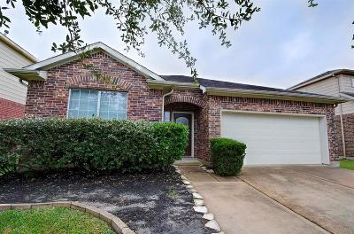 Pearland Single Family Home For Sale: 13316 Hickory Springs Lane