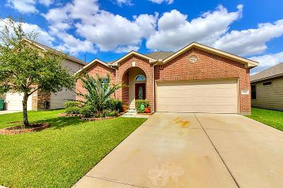 Katy Single Family Home For Sale: 19622 Green Oasis Court
