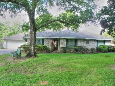 Friendswood Single Family Home For Sale: 906 Rigel Street