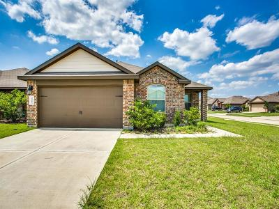 Katy Single Family Home For Sale: 29202 Jacobs River Drive