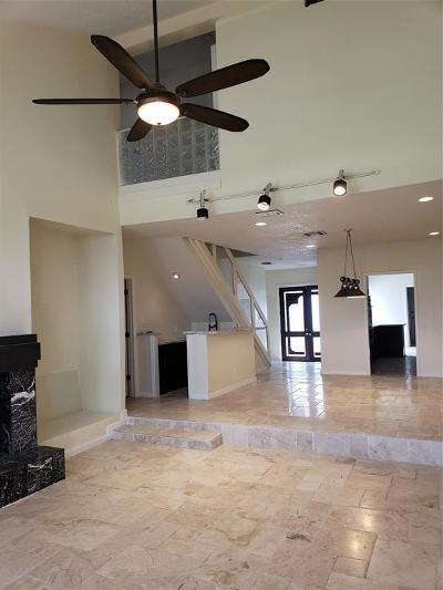 Harris County Condo/Townhouse For Sale: 7655 S Braeswood Boulevard #9