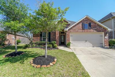 Katy Single Family Home For Sale: 28266 Helmsman Knolls Drive