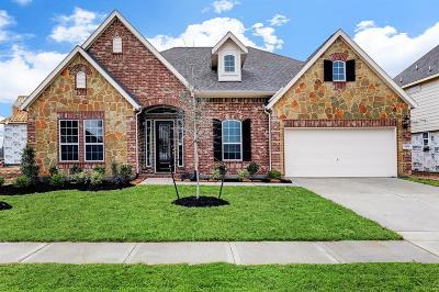 Houston Single Family Home For Sale: 12826 Lott Avenue
