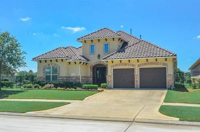 Single Family Home For Sale: 155 Lake View Loop