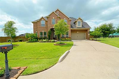 Tomball Single Family Home For Sale: 10403 Waterstone Estates Court