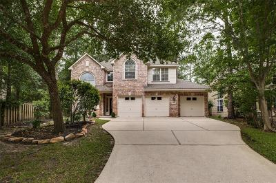 The Woodlands Single Family Home For Sale: 23 Alden Glen Drive