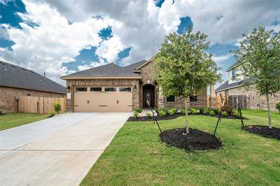 Rosenberg Single Family Home For Sale: 7507 Summer Night Lane