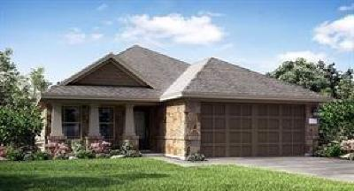Katy Single Family Home For Sale: 23019 Tindarey Falls Lane