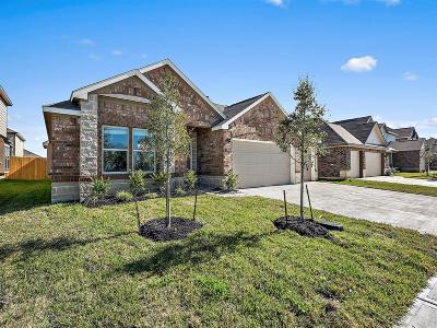 Manvel Single Family Home For Sale: 34 Alyssa Palms Drive