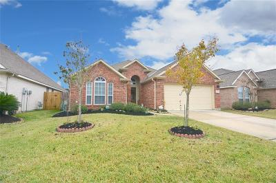 Tomball Single Family Home For Sale: 8311 Terra Valley Lane