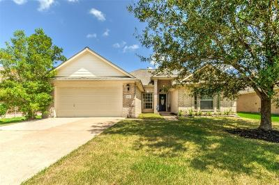 Tomball Single Family Home For Sale: 11910 Aerie Drive
