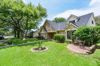 Houston Single Family Home For Sale: 7702 Skyline Drive