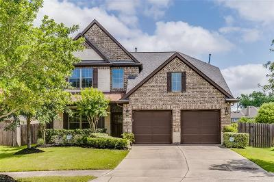 Sugar Land Single Family Home For Sale: 4402 Morning Cloud Lane