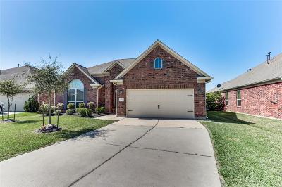 Rosenberg Single Family Home For Sale: 4714 Sedgewood Drive