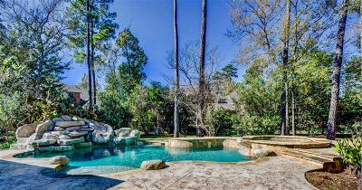 The Woodlands Single Family Home For Sale: 7 Dancing Breeze Place Place