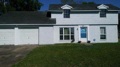 Houston Single Family Home For Sale: 13211 Glenwyck Street