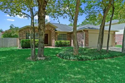 Tomball Single Family Home For Sale: 22703 Red Pine Drive