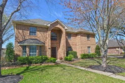 Friendswood Single Family Home For Sale: 2010 Plantation Drive