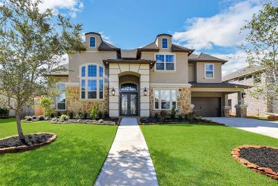 Friendswood Single Family Home For Sale: 2220 Pleasant Hill Drive