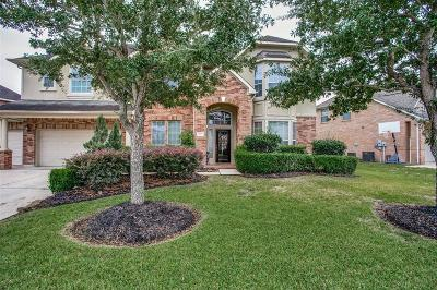 Pearland Single Family Home For Sale: 11702 Shoal Landing Street