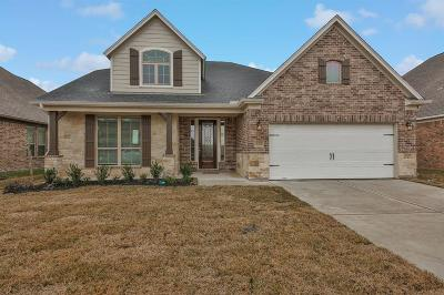 Rosenberg Single Family Home For Sale: 5007 Windy Poplar Trail